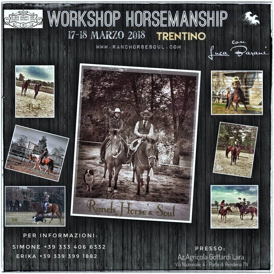 Workshop Horsemanship