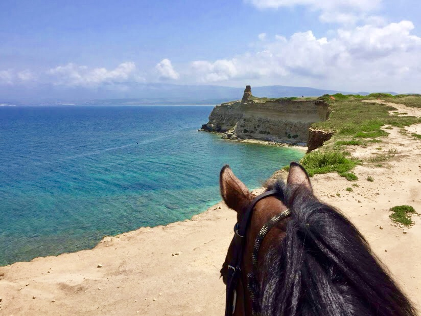 Horse Country Riding Center & Resort****